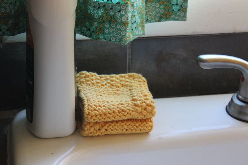 March2014sunnydayswashcloth 007